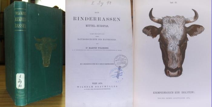 Wilckens, Martin: Die Rinderrassen Mittel-Europas. Grundzüge einer Naturgeschichte des Hausrindes.