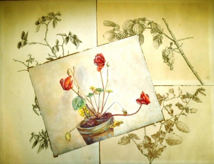 Baum- und Pflanzenstudien. - Bleistiftskizzen eines unbekannten Künstlers. [Kraus]: - Bleistift - Skizzen und Tuschzeichnung Pflanzen. Konvolut von 4 Zeichnungen, teils signiert.