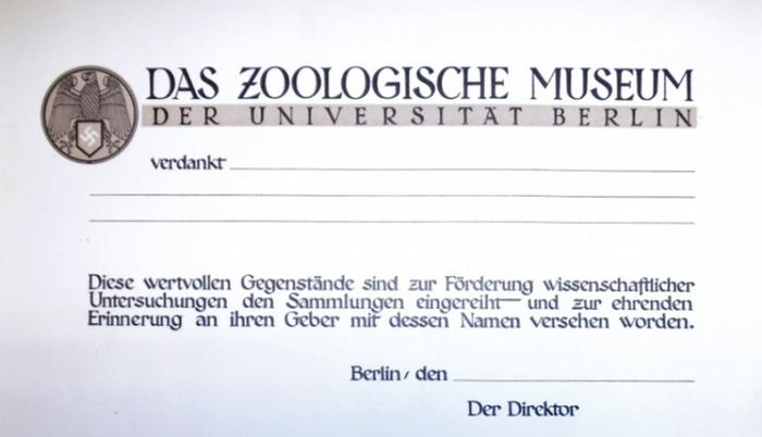 Zoologisches Museum Berlin, Das: Urkunde, Dankesurkunde blanko: Das Zoologische Museum der Universität Berlin verdankt?.. . Diese wertvollen Gegenstände sind zur Förderung wissenschaftlicher Untersuchungen den Sammlungen eingereiht und zur ehrenden Eri...