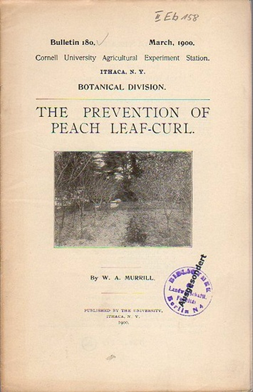 Murrill, W. A.: The Prevention of Peach Leaf-Curl. (= Bulletin 180, March, 1900. Cornell University Agricultural Experiment Station, Ithaca N. Y. Botanical Division).