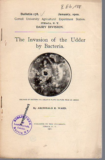 Ward, Archibald R.: The Invasion of the Udder by Bacteria. (= Bulletin 178, January, 1900. Cornell University Agricultural Experiment Station, Ithaca N. Y. Dairy Division).