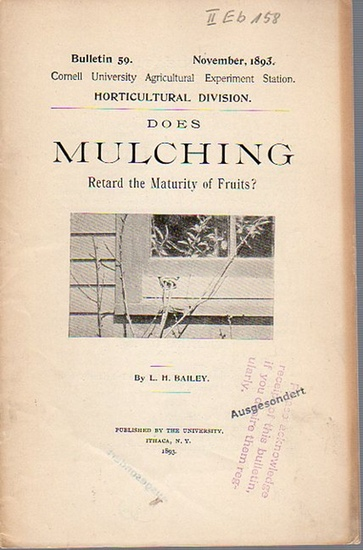 Bailey, L. H.: Does Mulching Retard the Maturity of Fruits. (= Bulletin 59, November, 1893. Cornell University Agricultural Experiment Station. Horticultural Division).
