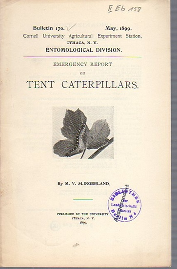 Slingerland, M. V.: Emergency Report on Tent Caterpillars. (= Bulletin 170, May, 1899. Cornell University Agricultural Experiment Station, Ithaca N. Y. Entomological Division).