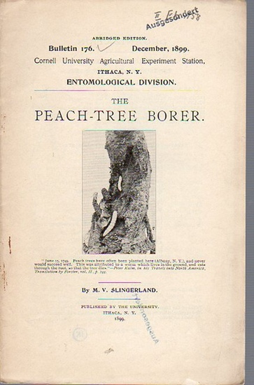 Slingerland, M. V.: The Peach-Tree Borer. (= Bulletin 176, December, 1899. Cornell University Agricultural Experiment Station, Ithaca N. Y. Entomological Division).