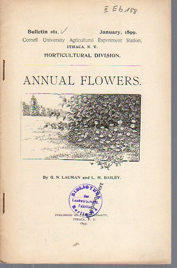 Lauman, G. N. and Bailey, L. H.: Annual flowers. (= Bulletin 161, January, 1899. Cornell University Agricultural Experiment Station, Ithaca N. Y. Horticultural Division).