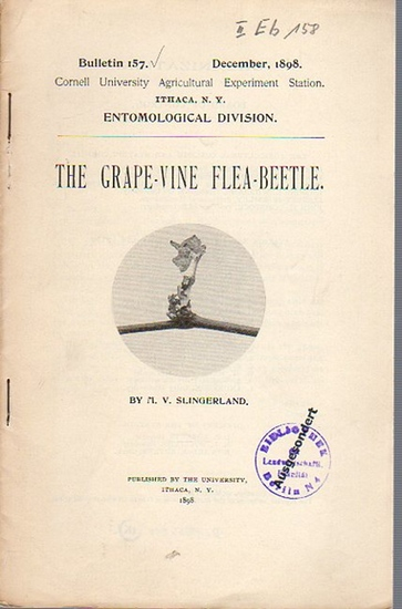 Slingerland, M. V.: The Grape-Vine Flea-Beetle. (= Bulletin 157, December, 1898. Cornell University Agricultural Experiment Station, Ithaca N. Y. Entomological Division).