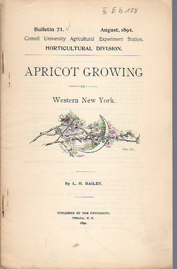 Bailey, L. H.: Apricot Growing in Western New York. (= Bulletin 71, August, 1894. Cornell University Agricultural Experiment Station. Horticultural Division).