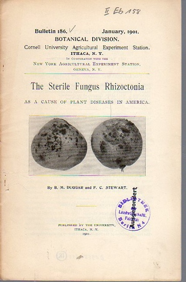 Duggar, B. M. // Stewart, F. C.: The Sterile Fungus Rhizoctonia as a cause of plant diseases in America. (= Bulletin 186, January, 1901. Cornell University Agricultural Experiment Station. Ithaca, N. Y. in Co-operation with the New York Agricultural Exper