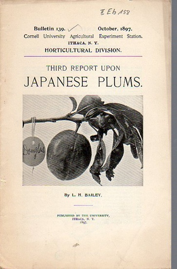 Bailey, L. H.: Third Report upon Japanese Plums. (= Bulletin 139, October, 1897. Cornell University Agricultural Experiment Station. Ithaca, N. Y. Horticultural Division.).