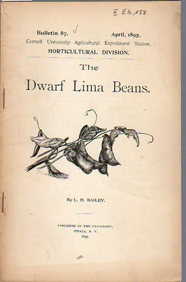 Bailey, L. H.: The Dwarf Lima Beans. (= Bulletin 87, April, 1895. Cornell University Agricultural Experiment Station, Horticultural Division).