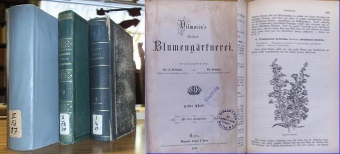 Grönland, I. und Rümpler, Th. (Hrsg.): Vilmorin's Blumengärtnerei. Komplett In 3 Bänden.