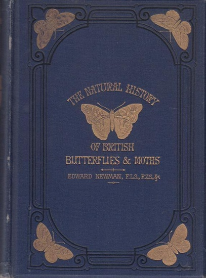 Newman, Edward: An illustrated natural history of British Butterflies and Moths. The figures drawn by George Willis and engraved by John Kirchner.