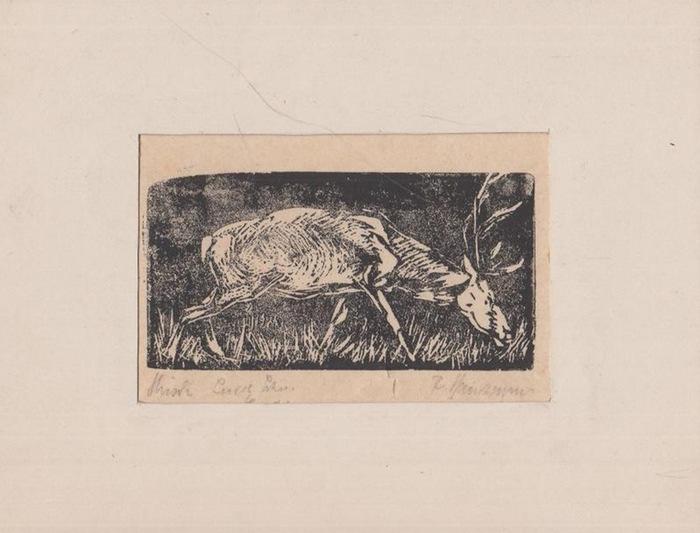 Hartmann, F.: Original Holzschnitt Handdruck 'Hirsch.' Signiert.