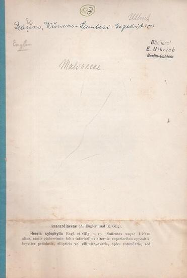 Warburg, Otto / Hugo Baum (Hrsg.): Kunene - Sambesi Expedition. Separatabdruck der Pflanzenfamilien von Anarcadiaceae - Sapotaceae (von Hugo Baum).