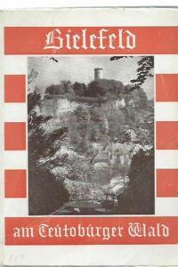 8°. Illustrierte Originalbroschur, der Einband ist etwas randlädiert. 211 Seiten mit mehreren ganzseitigen Schwarz-Weiß-Fotos und mit 1 mehrfach gefalteten Plan von Bielefeld. Innen sauber und gut erhalten.