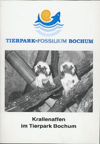 Tierpark Bochum Krallenaffen im Tierpark Bochum