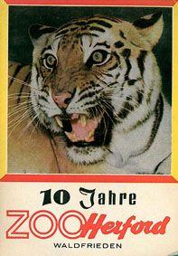 Tierpark Waldfrieden Herford 10 Jahre Zoo Herford Waldfrieden (Tiger)
