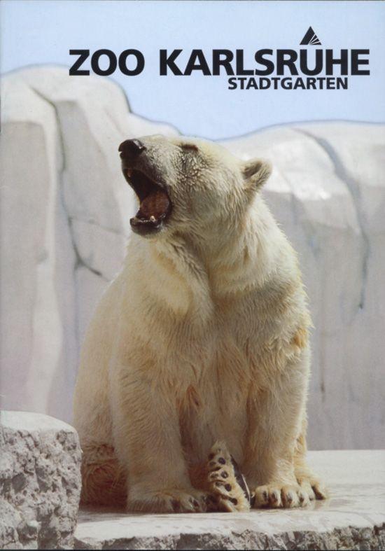 Zoo Karlsruhe Zooführer (Eisbär)