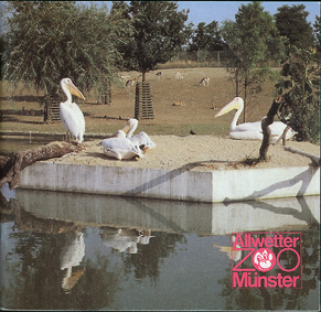 Allwetterzoo Münster Zooführer (Pelikane)