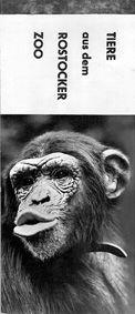 Zoo Rostock Tiere aus dem Rostocker Zoo, Heft mit 6 s/w-Postkarten