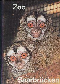 Zoo Saarbrücken Wegweiser, 1. Auflage (Nachtaffen)