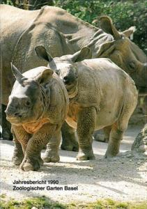 Zoo Basel 118. Jahresbericht 1990