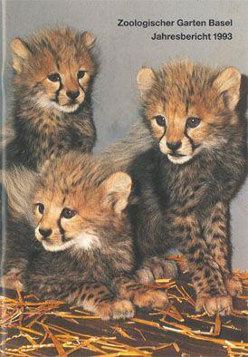 Zoo Basel Jahresbericht 1993