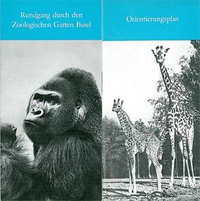 "Zoo Basel Rundgang durch den Zoologischen Garten Basel (Gorilla ""Stefi""/Giraffen) (Erwachsene: Fr 4.--)"