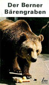 Berner Bärengraben Der Berner Bärengraben
