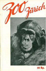 Zoo Zürich Zooführer (Schimpanse)