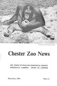 Chester Zoo Chester Zoo News (sitzender Orang Utan), December 1964