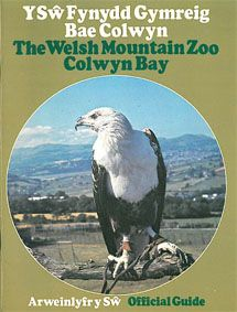 The Welsh Mountain Zoo Colwyn Bay Official Guide (Schreiseeadler)