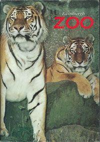 Edinburgh Zoo Guide Book (zwei Tiger)