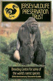 "Jersey Wildlife Preservation Trust Guide Book (Gorilla ""Jambo"") 25th Anniversary Souvenir Guide"