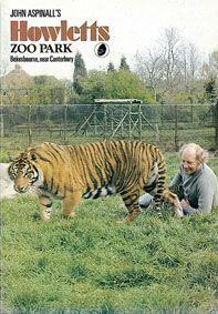 Howletts (Kent) A John Aspinall Zoo Park (Aspinall mit Tiger im Gehege)
