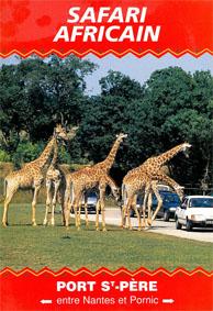 Safari Africain Safariplan (Giraffen kreuzen Straße)
