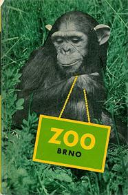 Zoo Brno, Tschechien Brno Zoo (Schimpanse)