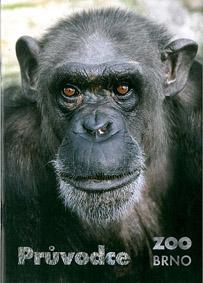 Zoo Brno, Tschechien Parkführer (Schimpanse)
