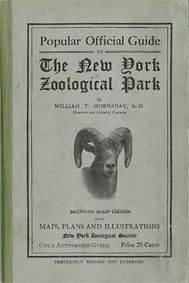 New York Zoological Park Popular Official Guide (Mufflon)