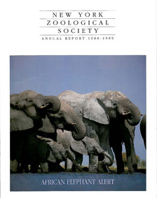 New York Zoological Society Annual Report 1988-1989