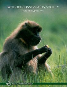 Wildlife Conservation Society Annual Report 1994