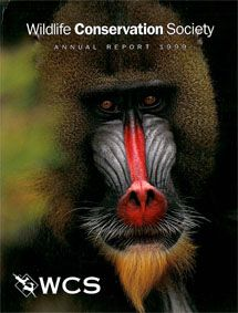 Wildlife Conservation Society Annual Report 1999