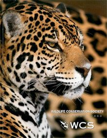 Wildlife Conservation Society Annual Report 2000