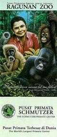 Ragunan Zoo Faltplan (Pusat Primata Schmutzer/ The Schmutzer Primate Center)