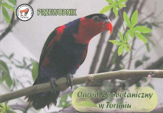 Zoologischer Garten Torun Przewodnik, Zooführer (Papagei)