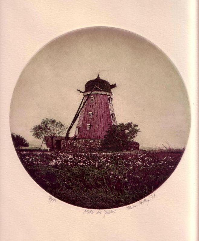 Mühle bei Gladsax. Aquatintaradierung von runder Platte in Dunkelgrün, Violett u. Weiß.