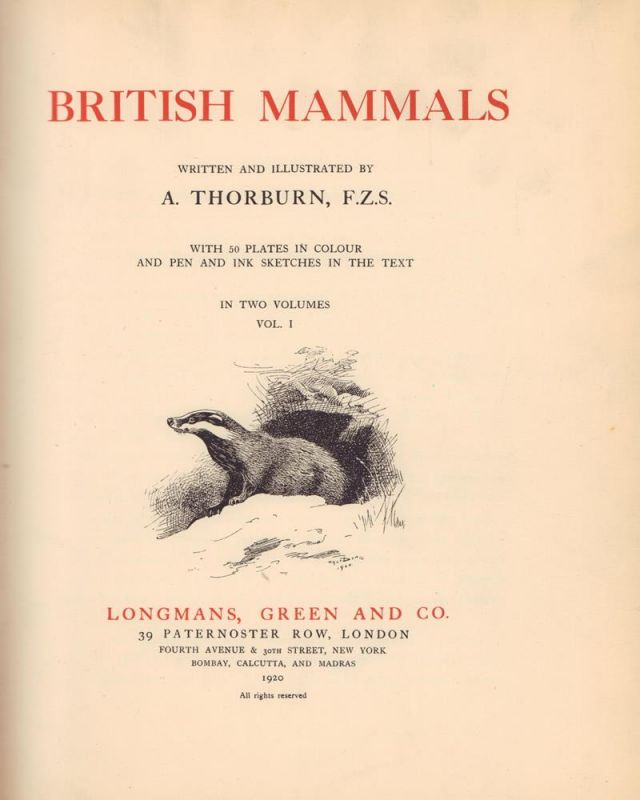 Thorburn, Archibald. British Mammals. Written and illustrustrated by A. Thorburn. With 50 plates in colour and pen and ink sketches in the text. 2 Bde. (= komplett).