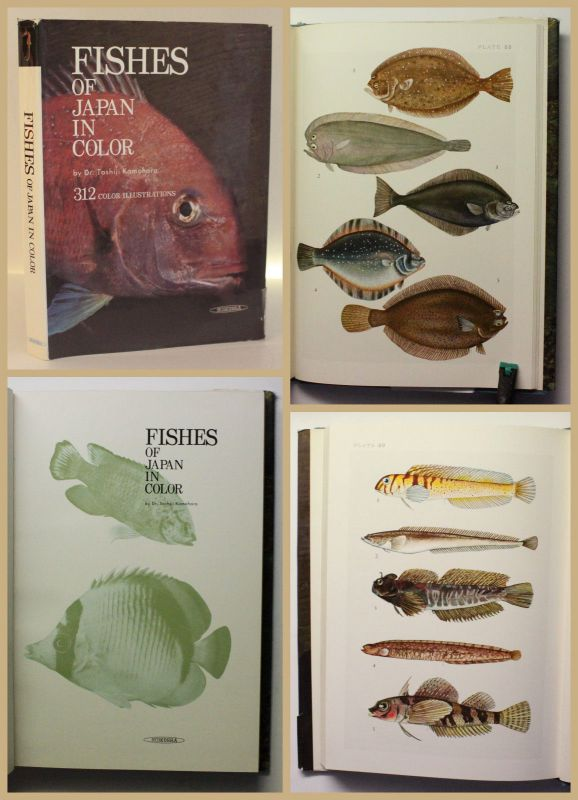 Kamohara Fishes of Japan in Color 1967 Ichthyologie Fischkunde Fische xy