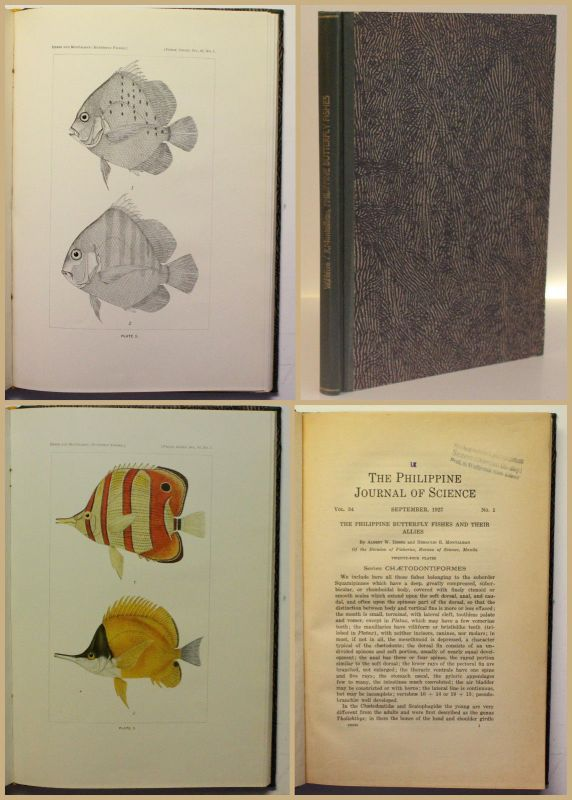 Herre/Montalban The Philippine Butterfly Fishes and their Allies 1927 Fische xy