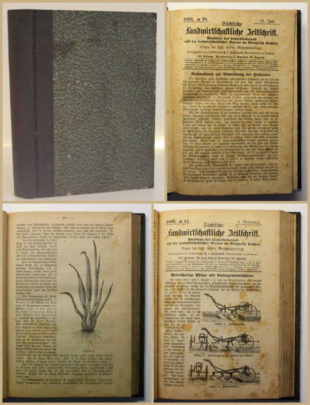 Sächsische Landwirtschaftliche Zeitung Jahrgang XLI 1893 Agrar Urproduktion xy